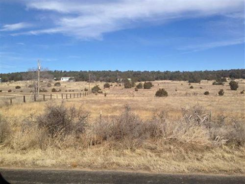37.23 Acres With Water Well : Tijeras : Bernalillo County : New Mexico