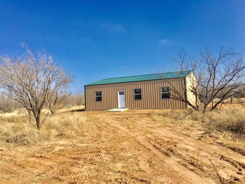 Looking For Deer, Turkey And Hogs : Old Glory : Stonewall County : Texas