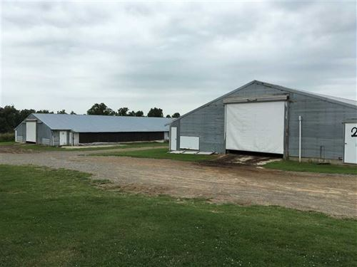 This is a 5 House Omp Broiler Poul : Bald Knob : White County : Arkansas