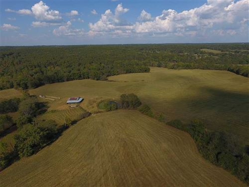 Productive 448 Acre Farm in Seymou : Diggins : Webster County : Missouri