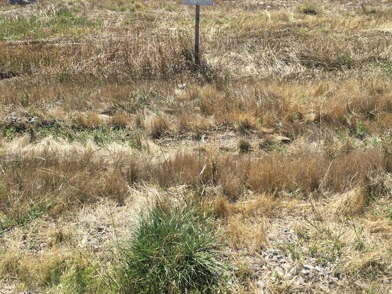 Riverview Subdivision Lot 3 : Riverton : Fremont County : Wyoming