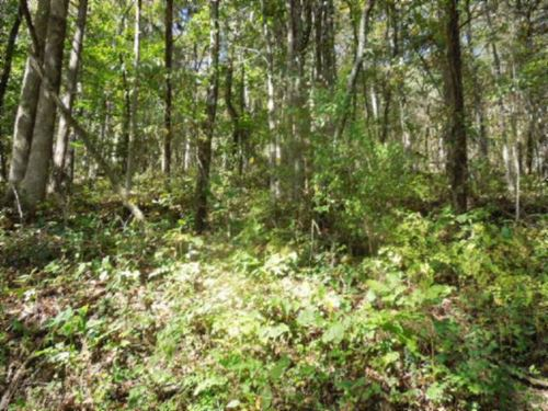 2.80Ac Close To Rivers And Lakes : Gainesboro : Jackson County : Tennessee