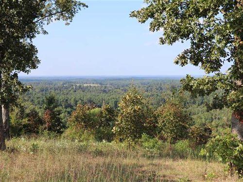 Dunlap Hill Tract : Douglassville : Cass County : Texas