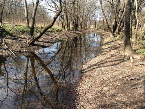 Collin County Hunting Land For Sale : Farmersville : Collin County : Texas