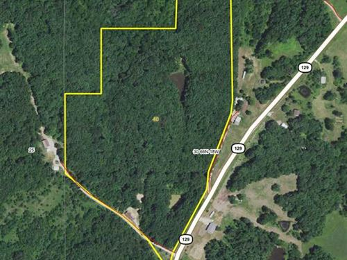 40 M/L Acres of Hunting/Timberland : Unionville : Putnam County : Missouri