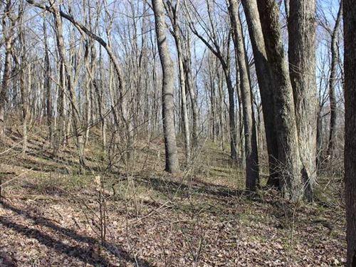 Vanatta Rd - 9 Acres - Hocking : Logan : Hocking County : Ohio