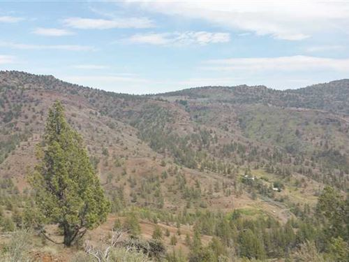 73 Acres Land Near Service Creek : Fossil : Wheeler County : Oregon