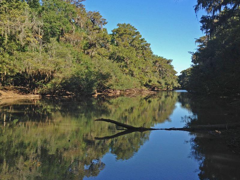 Hunters Paradise : Jeffersonville : Twiggs County : Georgia