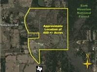 Calfee Ranch : Montgomery : Montgomery County : Texas