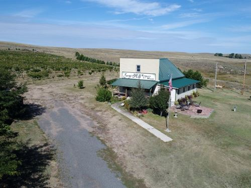 Sage Hill Vineyard And Winery : Parks : Dundy County : Nebraska