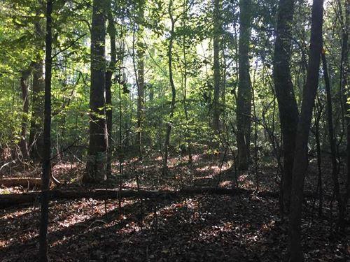Just Reduced - 112 Acres of Hu : Philadelphia : Neshoba County : Mississippi