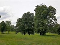1,240 Ac Ducks Bluff River Farm, 3 : Clifton : Decatur County : Tennessee