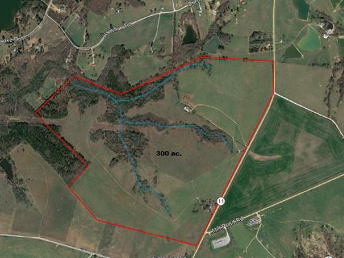 300 Acres In Mansfield, Ga : Mansfield : Newton County : Georgia