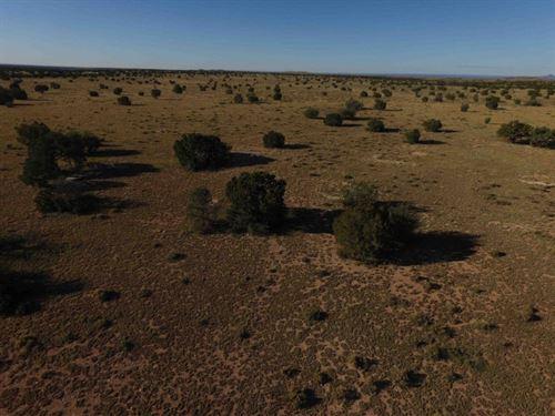 5 Acres For Sale In Williams, AZ : Williams : Coconino County : Arizona