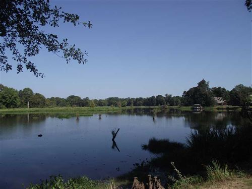 Waterfront Lot in Black Warrior Ba : Akron : Hale County : Alabama