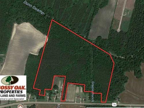 49.46 Acres of Hunting And Timber : Chadbourn : Columbus County : North Carolina