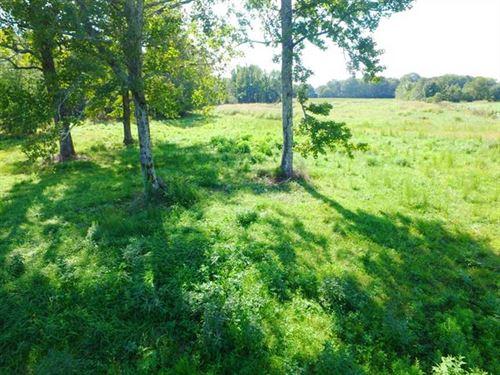 Hidden Hollow Farm Offers Excellen : Muscle Shoals : Colbert County : Alabama