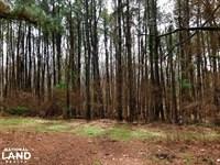 Wheeler Road 20 Acres Lot : Hernando : Desoto County : Mississippi