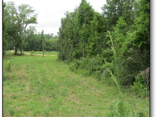 7 Acres In Rankin County : Florence : Rankin County : Mississippi