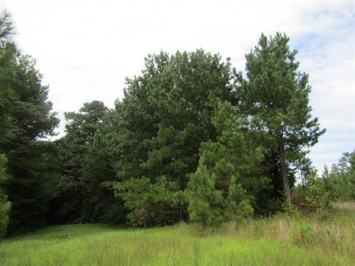 30 Acres In Neshoba County, Mississ : Union : Neshoba County : Mississippi