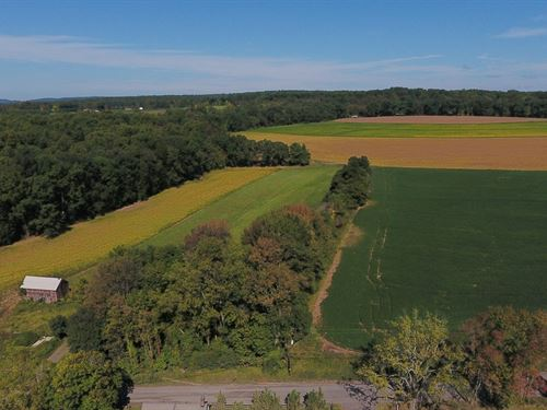 80.2+/- Acres Preserved Farmland : Pittstown : Hunterdon County : New Jersey