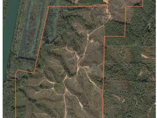 254 Acres Fulton, Ms : Fulton : Itawamba County : Mississippi