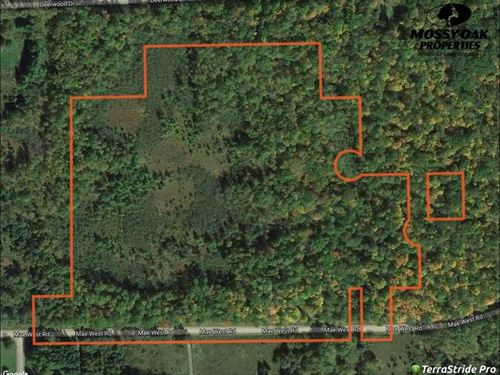 25 Acres of Buildable Hunting Land : Ladysmith : Rusk County : Wisconsin