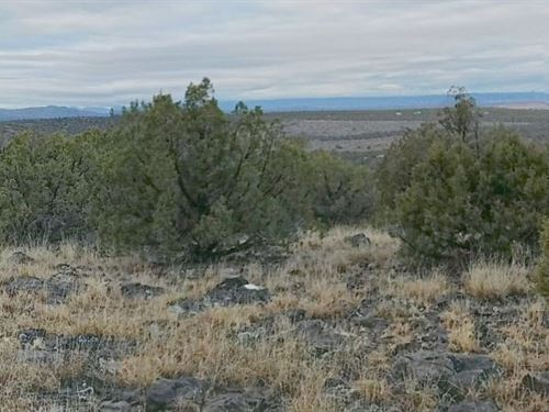 Coconino County, Az $21,500 Neg : Williams : Coconino County : Arizona