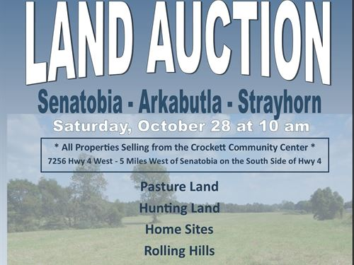 Hunting Land - Pasture - Home Sites : Coldwater : Tate County : Mississippi
