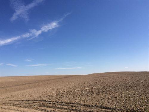 Stan Martin Cheyenne 320 : Wheeler : Cheyenne County : Kansas
