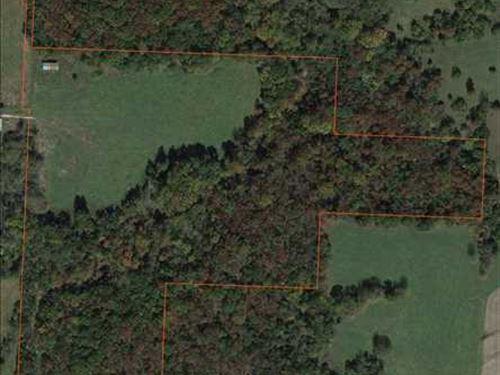 46 Acre Live Creek Farm With Tons : Windsor : Benton County : Missouri