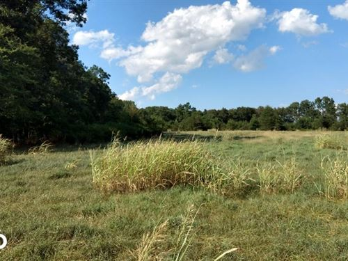 Dr. Truitt Drive : Bear Creek : Chatham County : North Carolina