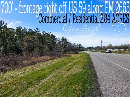 2.84 Acres In Polk County : Goodrich : Polk County : Texas