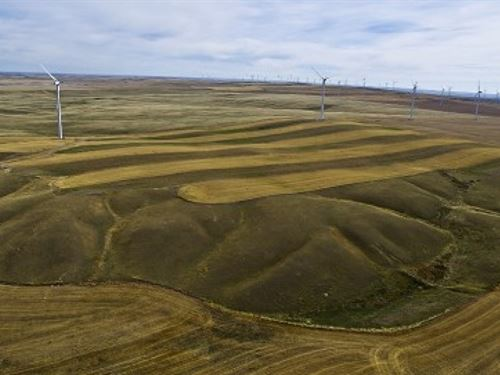 Farm With Wind Income : Ethridge : Toole County : Montana