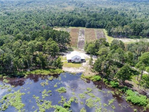 Cooks Landing Plantation : Hardeeville : Jasper County : South Carolina