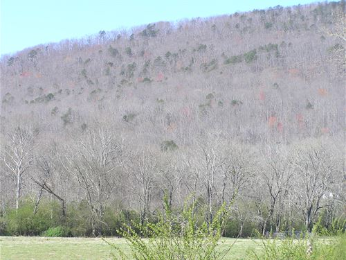 Mountain Land, Valley Access : Dunlap : Sequatchie County : Tennessee