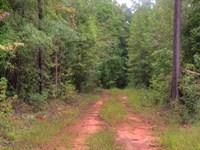7.3 Acres On Scuffleboro Rd : Eatonton : Putnam County : Georgia
