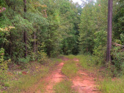 7.3 Acres On Scuffleboro Rd : Eatonton : Putnam County : Georgia