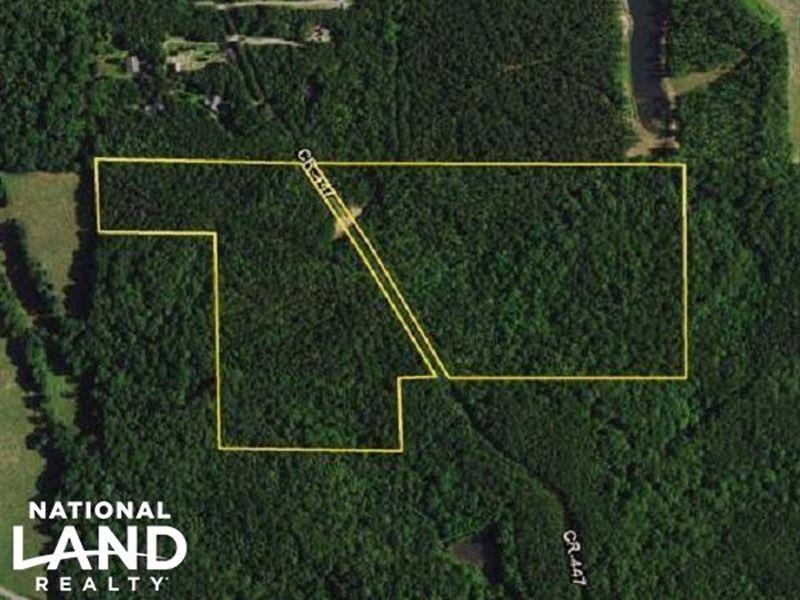 County Road 447 Timber And Recreati : Heflin : Cleburne County : Alabama