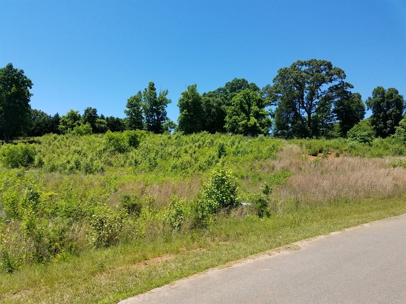 Reduced 4.6 Acres Brosville : Danville : Pittsylvania County : Virginia