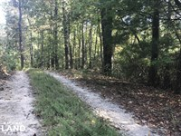 Table Rock Mountain Property : Pickens : Pickens County : South Carolina