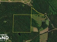 Roanoke Timber Investment : Roanoke : Randolph County : Alabama