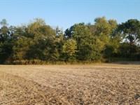 Deep Draw Farm : Pearl : Pike County : Illinois