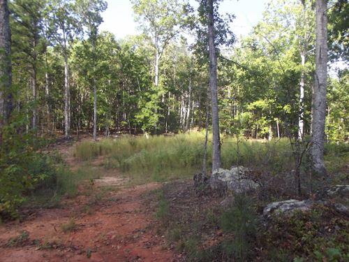 115 Acres Prime Land - Bartow Co : White : Bartow County : Georgia