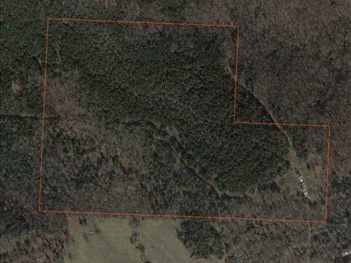 Great 50 Acre Hunting Tract Close : Warsaw : Benton County : Missouri