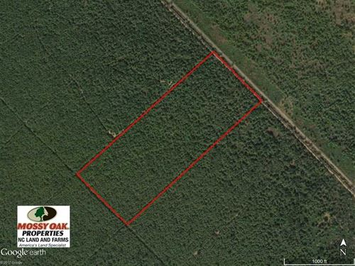 60 Acres of Hunting Land For Sale : Currituck Township : Hyde County : North Carolina