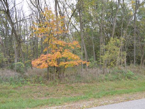 Golliher Farm Subdivision Lot 3 : Westfield : Marquette County : Wisconsin