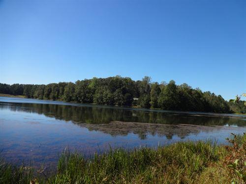 55 Beautiful Rolling Acres : Seneca : Oconee County : South Carolina