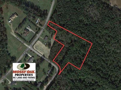 3.6 Acres of Recreational Timber : Lumberton : Robeson County : North Carolina