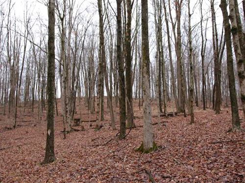 SR 681 - 6.9 Acres - Athens County : Albany : Athens County : Ohio